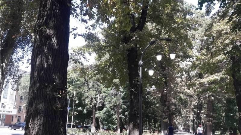 На бульваре Эркиндик днем горят фонари. Фото