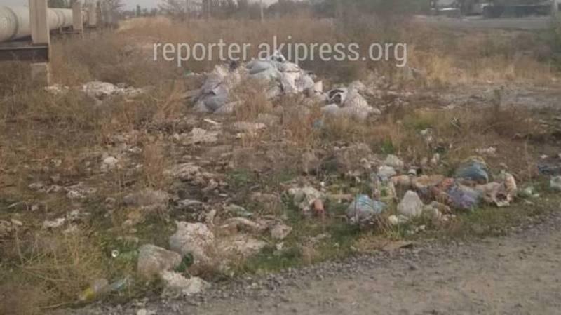 Участок улицы в Ак-Орго, на котором лежит мусор, обслуживает частная компания