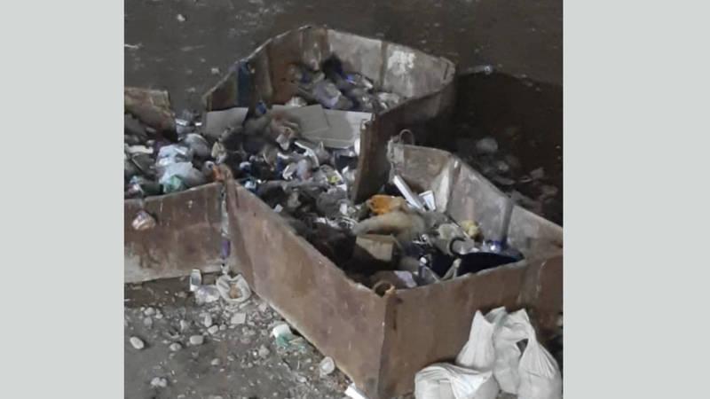 В жилмассиве Кок-Жар мусор и антисанитария, - горожанин