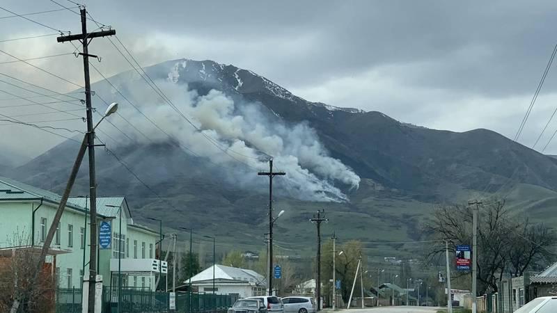 Пожар в горах недалеко от Бишкека. Фото