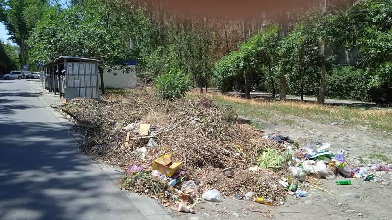 В 10 мкр мусор бросают рядом с мусорными баками. Фото горожанки Мухабат