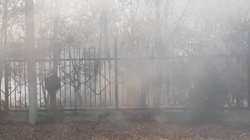 В Базар-Коргоне горит центральный парк. Фото