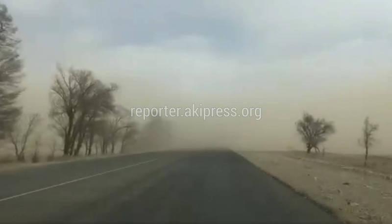 «Пыльный Армагеддон». Видео песчаной бури на Иссык-Куле