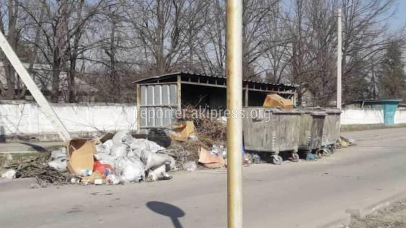 В Бишкеке на улицах Садыгалиева и Кайназарова не вывозят мусор, - горожанин (фото)