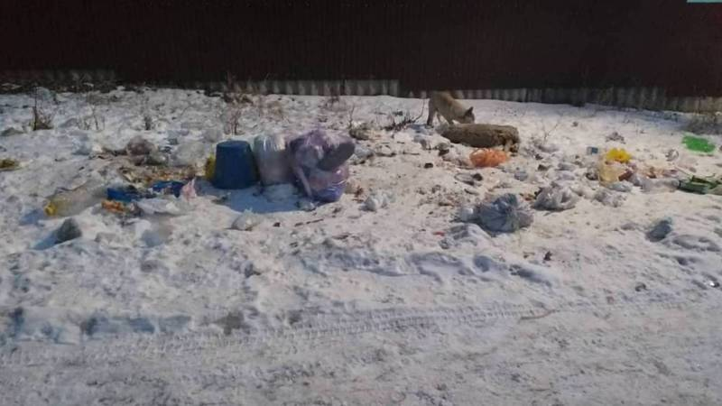 В селе Таш-Добо убрали мусорные контейнеры, жители бросают мусор на улицу. Фото