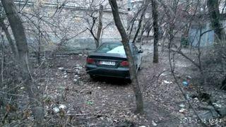 Парковка в зеленой зоне на Ахунбаева-Айтматова