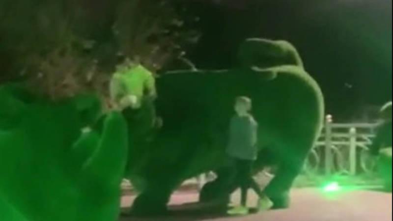 В парке «Ынтымак» люди повреждают топиарные фигуры животных