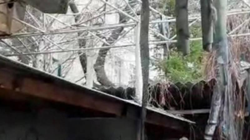 Горожанин жалуется на заброшенное кафе, которое портит облик столицы. Видео