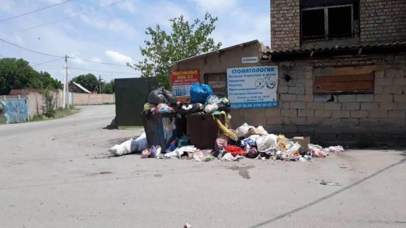 В Маевке вторую неделю не вывозят мусор. Фото местного жителя