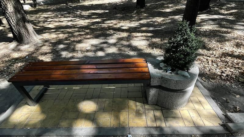 В сквере «Физкультурный» нет урн у скамеек. Фото