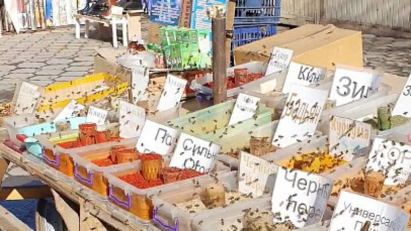 Необычное поведение пчел у лавки со специями в мкр Асанбай. Видео