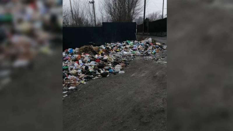В селе Юсупова в Араванском районе не вывозят мусор, - жительница (фото)