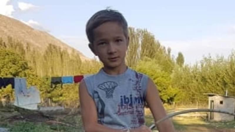10-летний Айрат отдал своих цыплят, чтобы медиков в Бишкеке бесплатно кормили. Видео