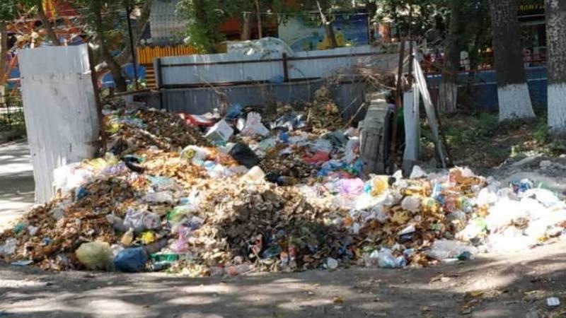 Житель Оша жалуется на мусор и вонь в парке имени Алишера Навои