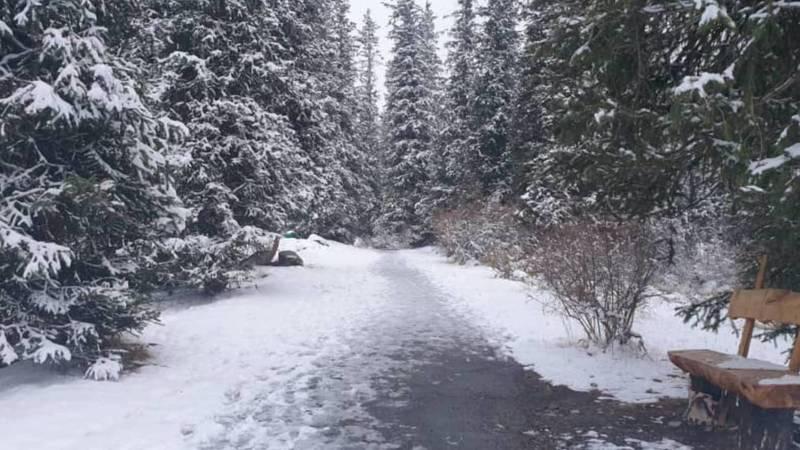 Зимняя сказка в национальном парке Ала-Арча. Фото