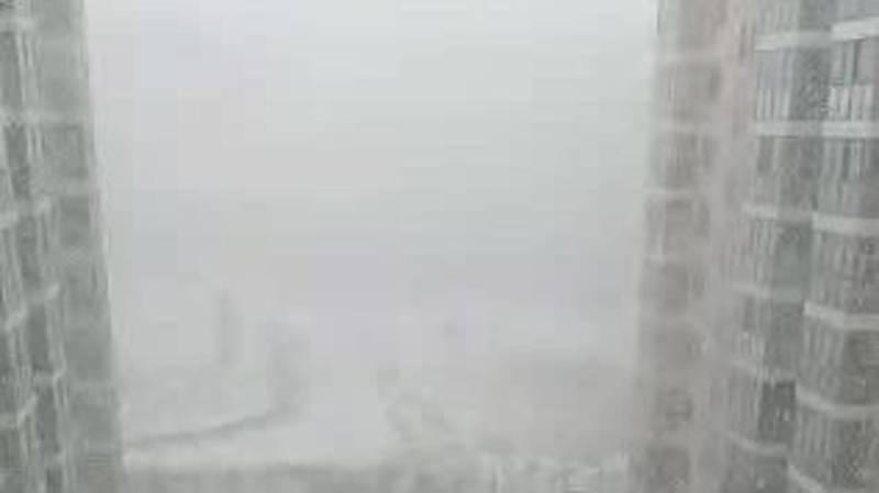 Метель в Бишкеке. Видео