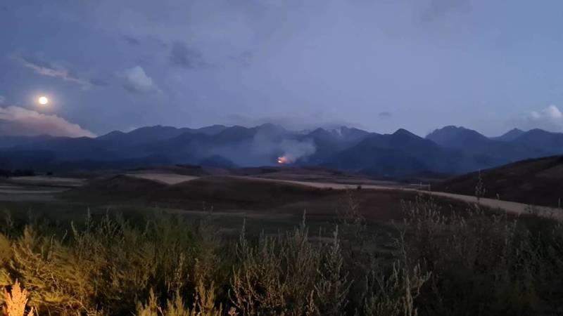 Пожар возле горнолыжной базы Тогуз-Булак. Фото