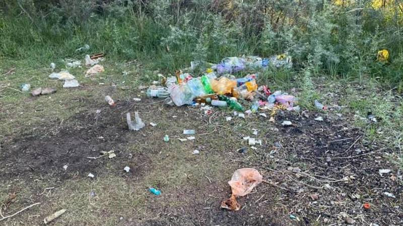 Бишкечанка жалуется на мусор на диком пляже в Чолпон-Ате. Фото