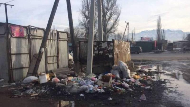 Возле рынка «Нурлан» в Новопавловке не вывозят мусор. Фото