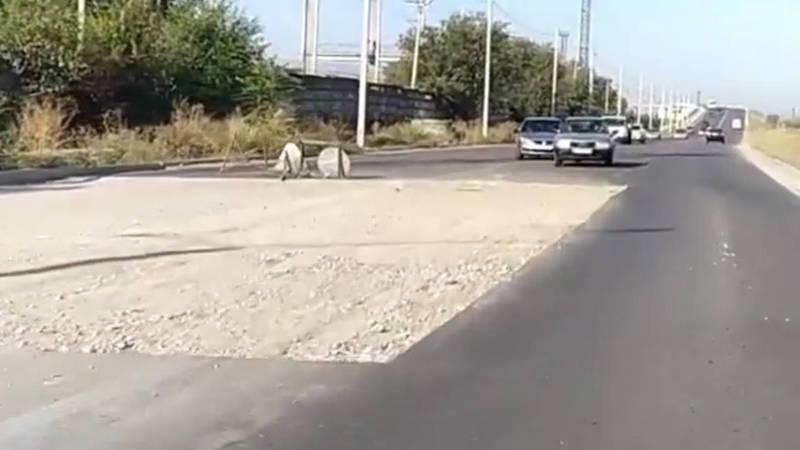 Когда заделают ямы на ул.Льва Толстого? - столичные водители