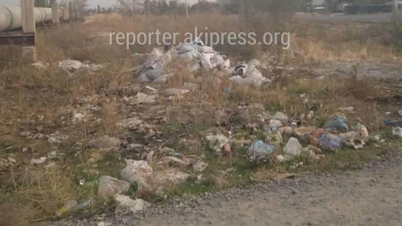 Горожанин просит убрать мусор на ул.Бар-Булак в Ак-Орго. Фото