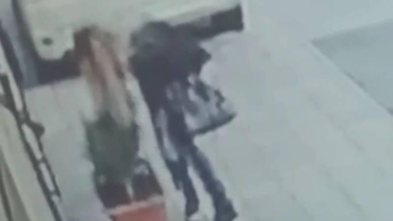 Девушка украла живое расстение у дома на Московской. Видео