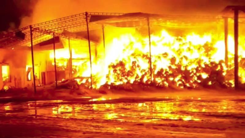В Жайылском районе сгорело 20 тыс. тюков. Видео