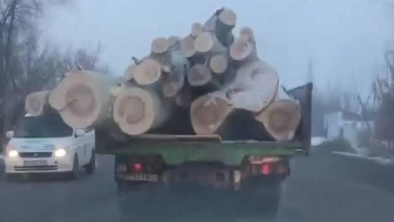 «Пункт назначения». В Бишкеке замечен грузовик, загруженный бревнами под завязку