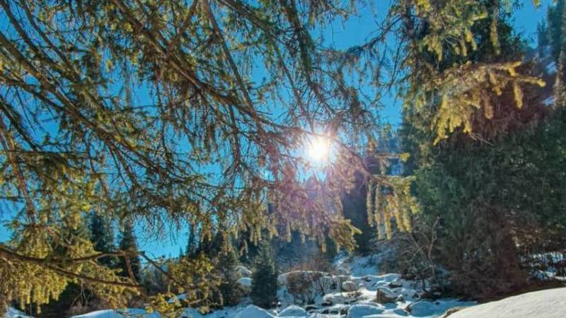 Красота природы в Григорьевском ущелье. Фото