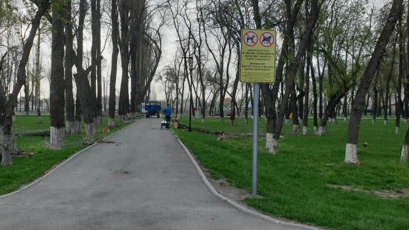 В парке Тулебердиева валят деревья. Фото горожанина