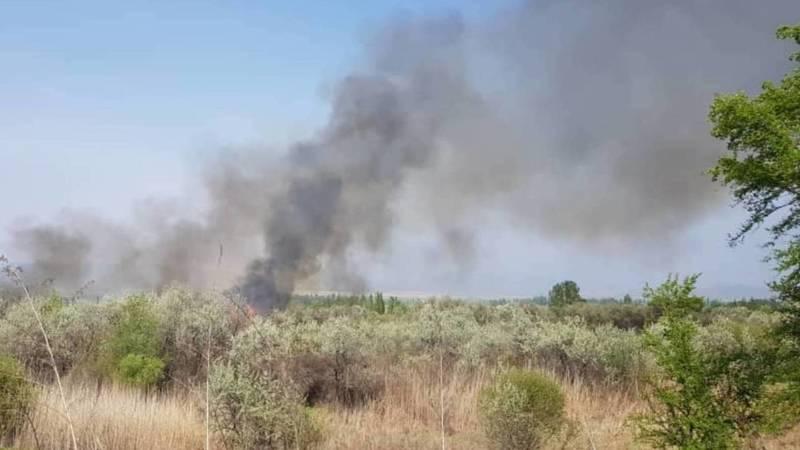На Объездной дороге горит лесополоса. Видео