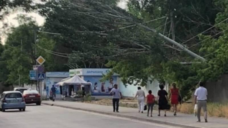 Возле 4-й горбольницы дерево может упасть на тротуар. Фото