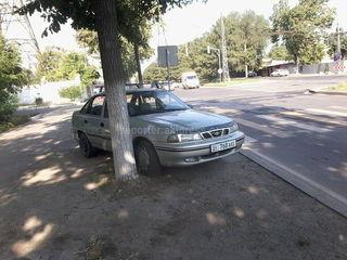 Парковка на газоне на Чуй-Лермонтова