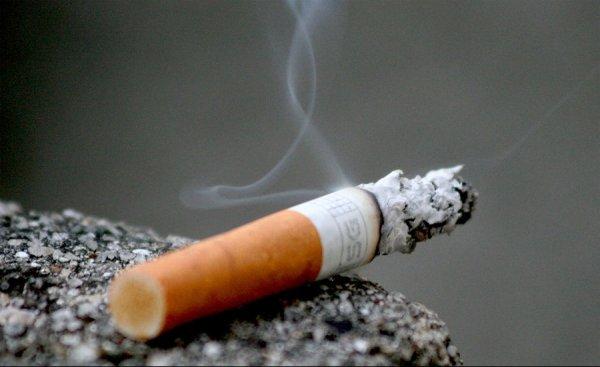 Предлагают табачные изделия сигареты оптом в спб парламент
